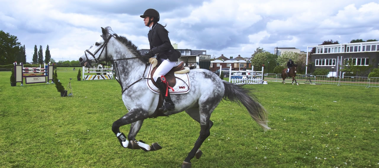Charity Horse Show